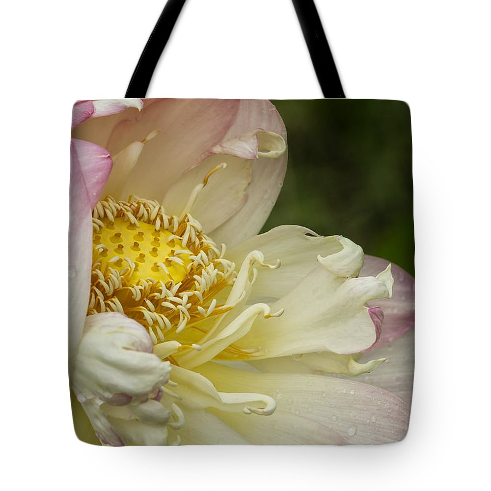 Yellow Tote Bag featuring the photograph Inner Beauty Of The Lotus by Linda D Lester