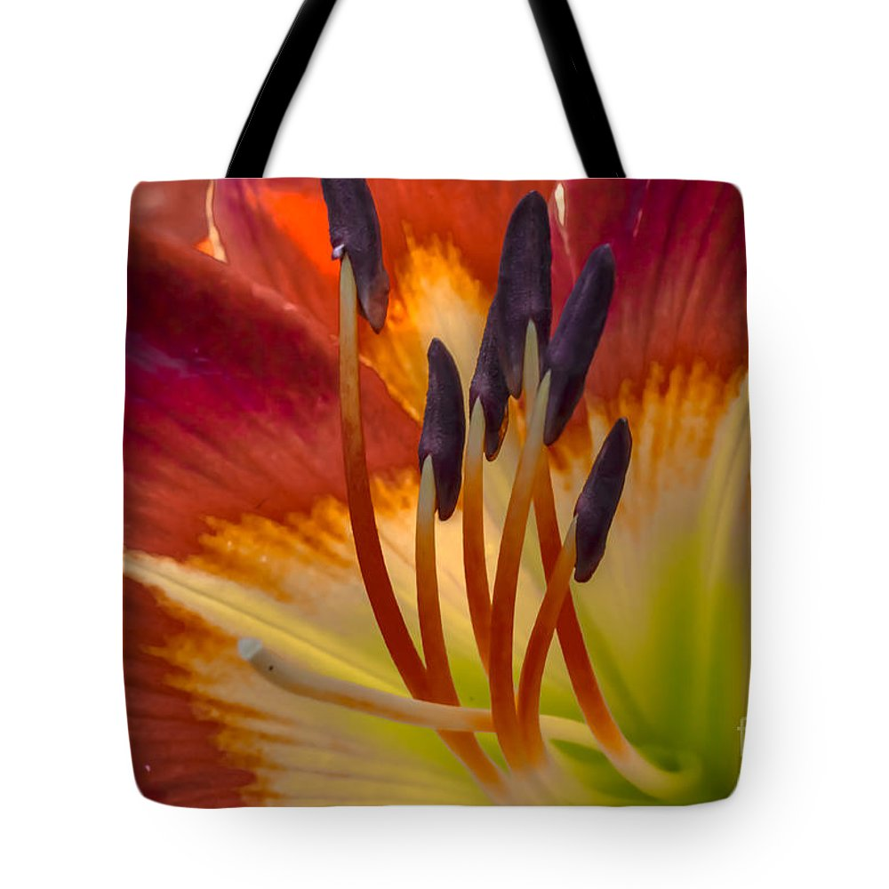 Inner Tote Bag featuring the photograph Inner Beauty by Scott Hervieux