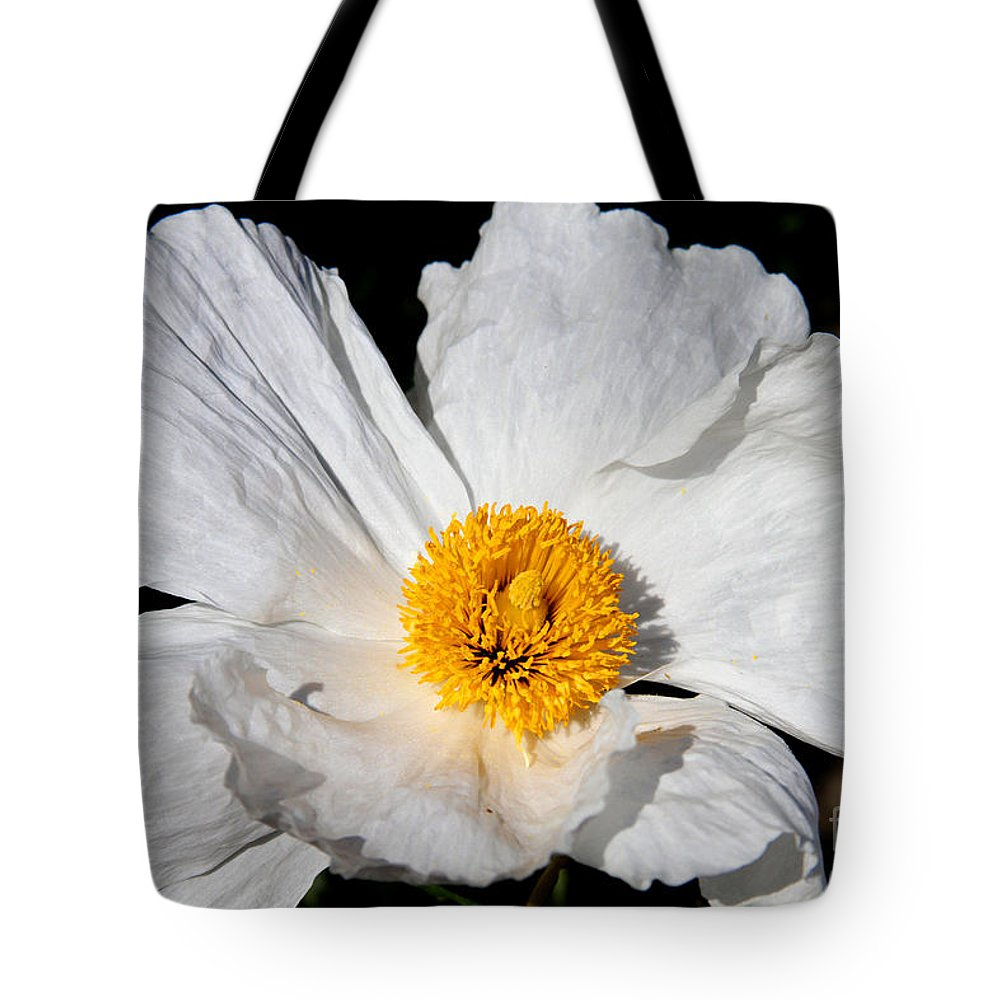Peony Tote Bag featuring the photograph Innocent Krinkle - White Peony By Diana Sainz by Diana Raquel Sainz