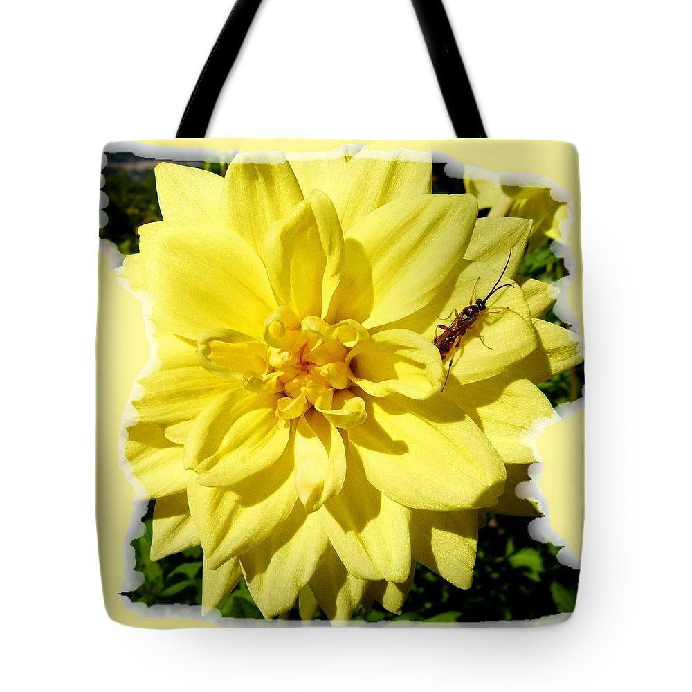 Insect On A Dahlia Tote Bag featuring the photograph Insect On A Dahlia by Will Borden