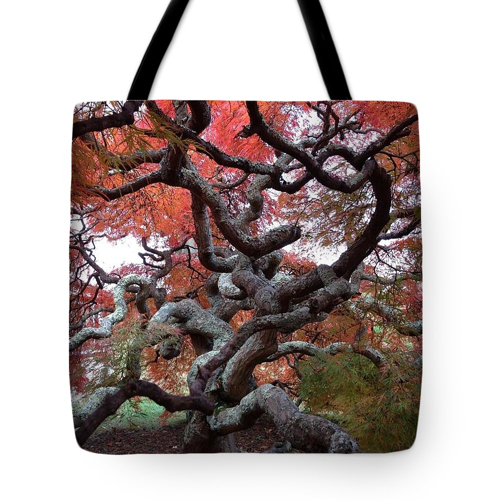 Japanese Maple Tote Bag featuring the photograph Inside The Japanese Maple by Lois Ivancin Tavaf