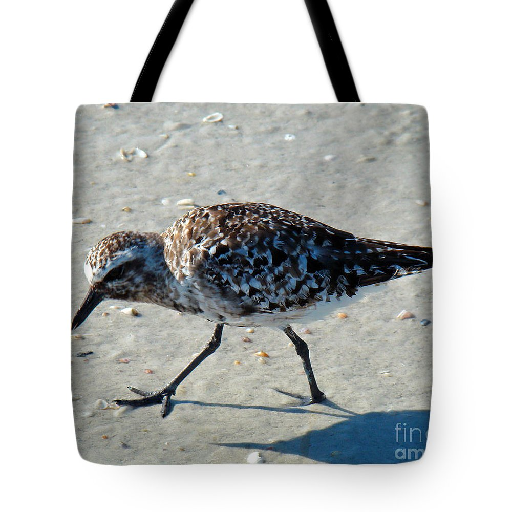 Plover Tote Bag featuring the photograph Intent by Nancy L Marshall