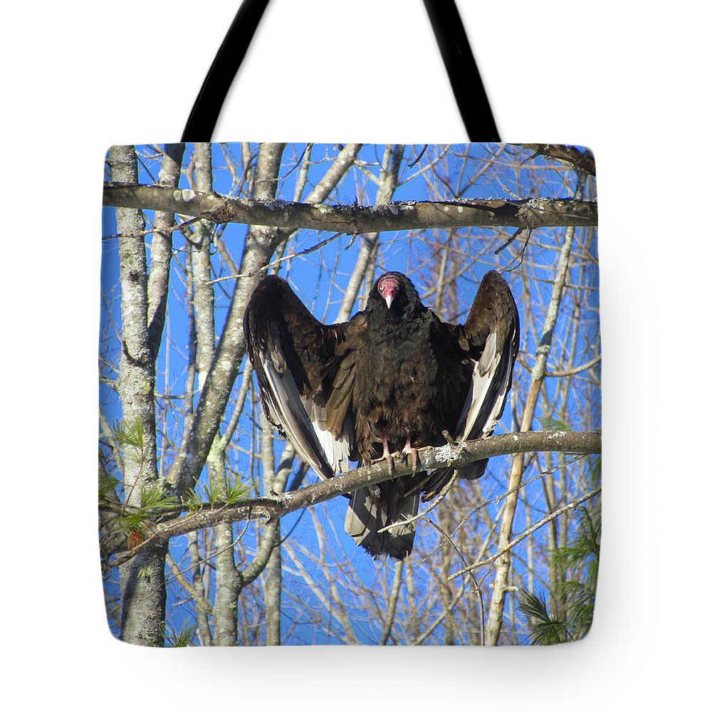 Turkey Vulture Tote Bag featuring the photograph Intimidating by Elizabeth Dow
