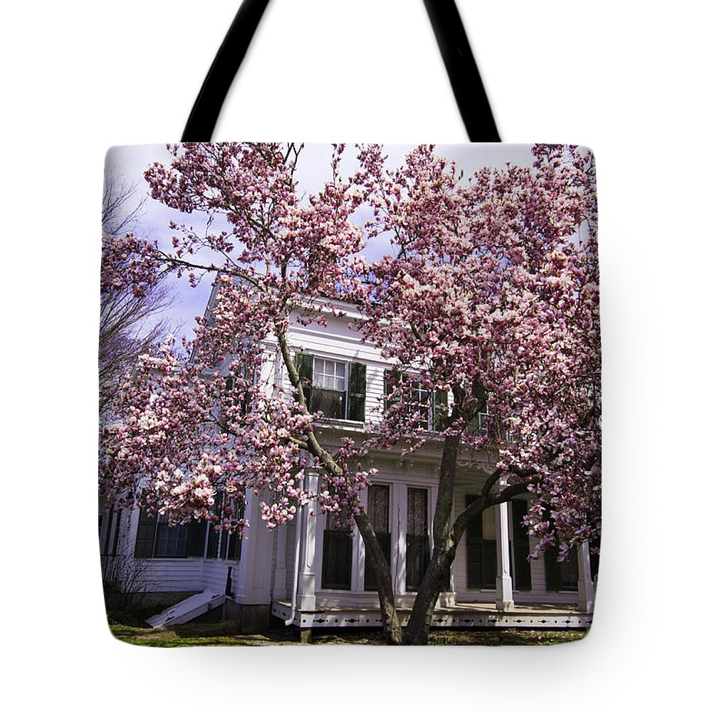 Spring Tote Bag featuring the photograph Into Spring by Joe Geraci