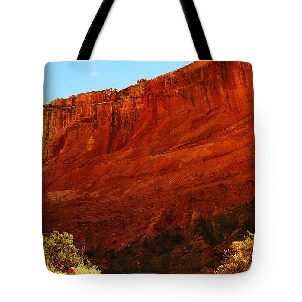 Tote Bag featuring the photograph Into The Canyon by Jeff Swan