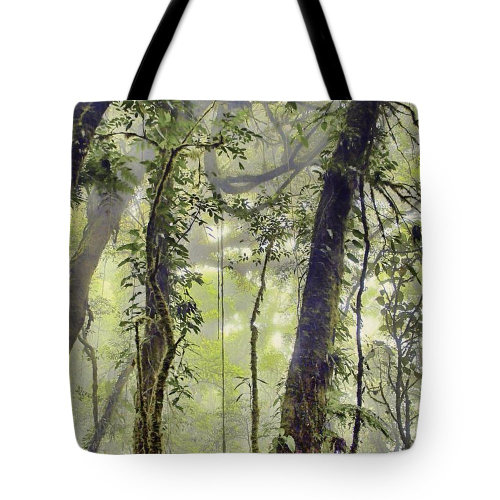 Tote Bag featuring the photograph Into The Clouds II by Karla Weber
