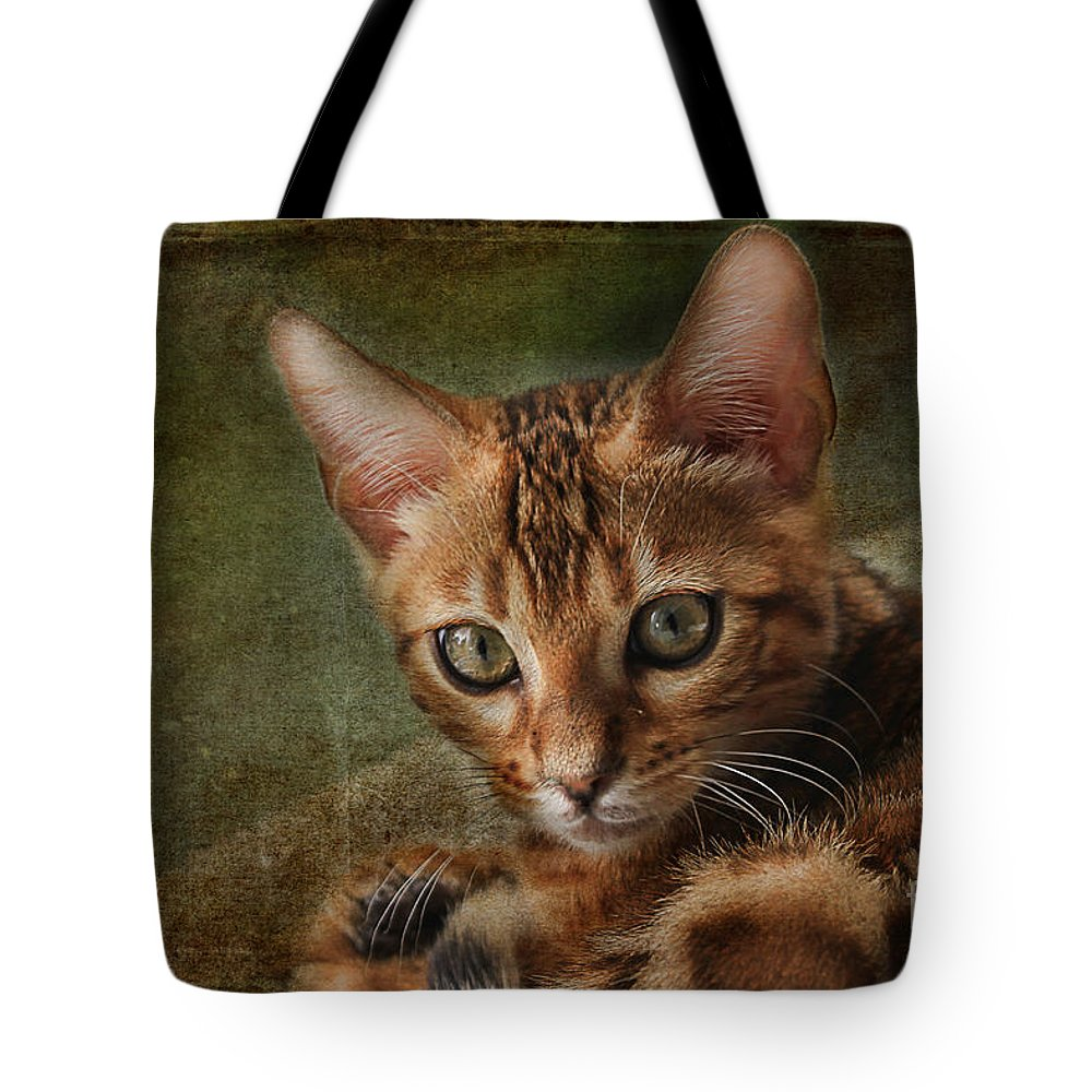 Animal Tote Bag featuring the photograph Introducing Leo by Teresa Zieba