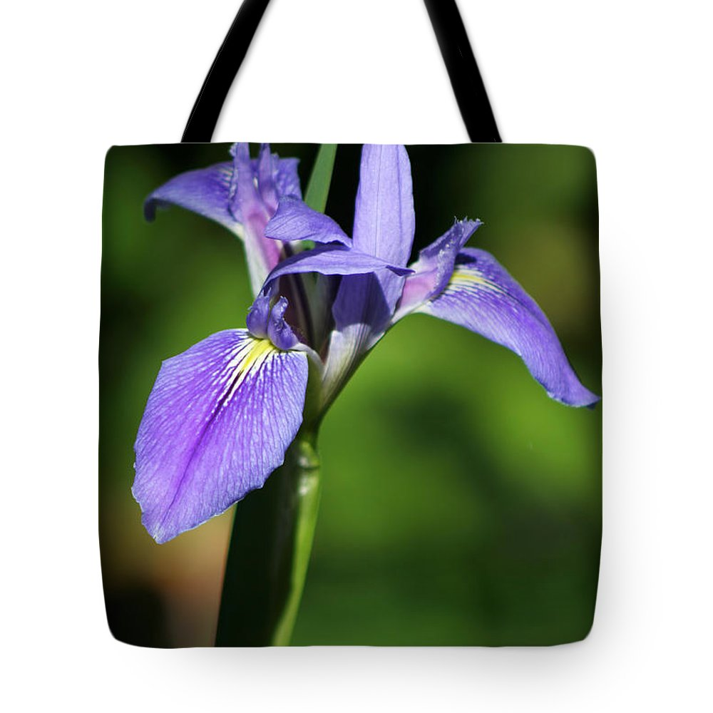 Silver Springs Tote Bag featuring the photograph Iris by Allan Lovell