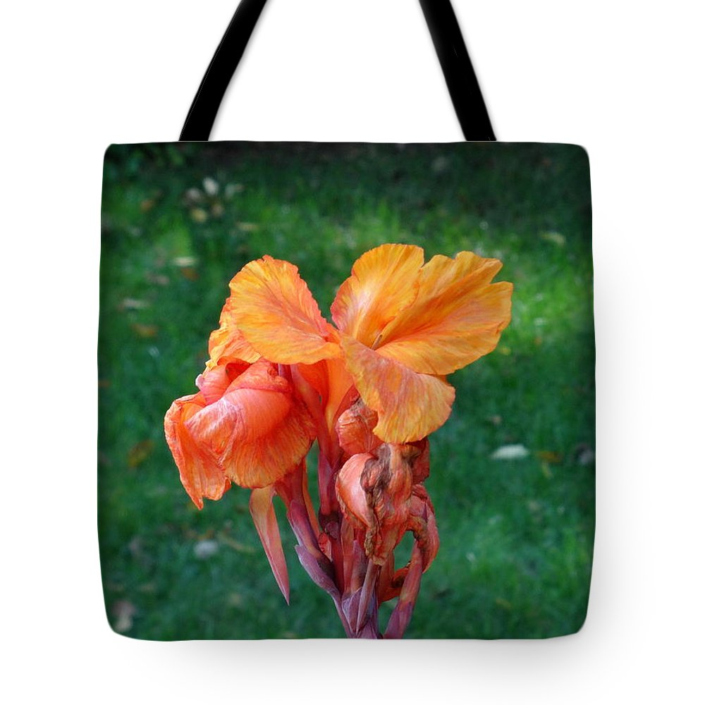 Iris Tote Bag featuring the photograph Iris In Autumn by Fred Wilson