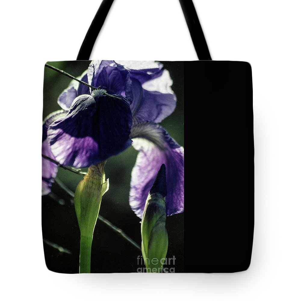 Flowers Tote Bag featuring the photograph Spring's Gift by Kathy McClure