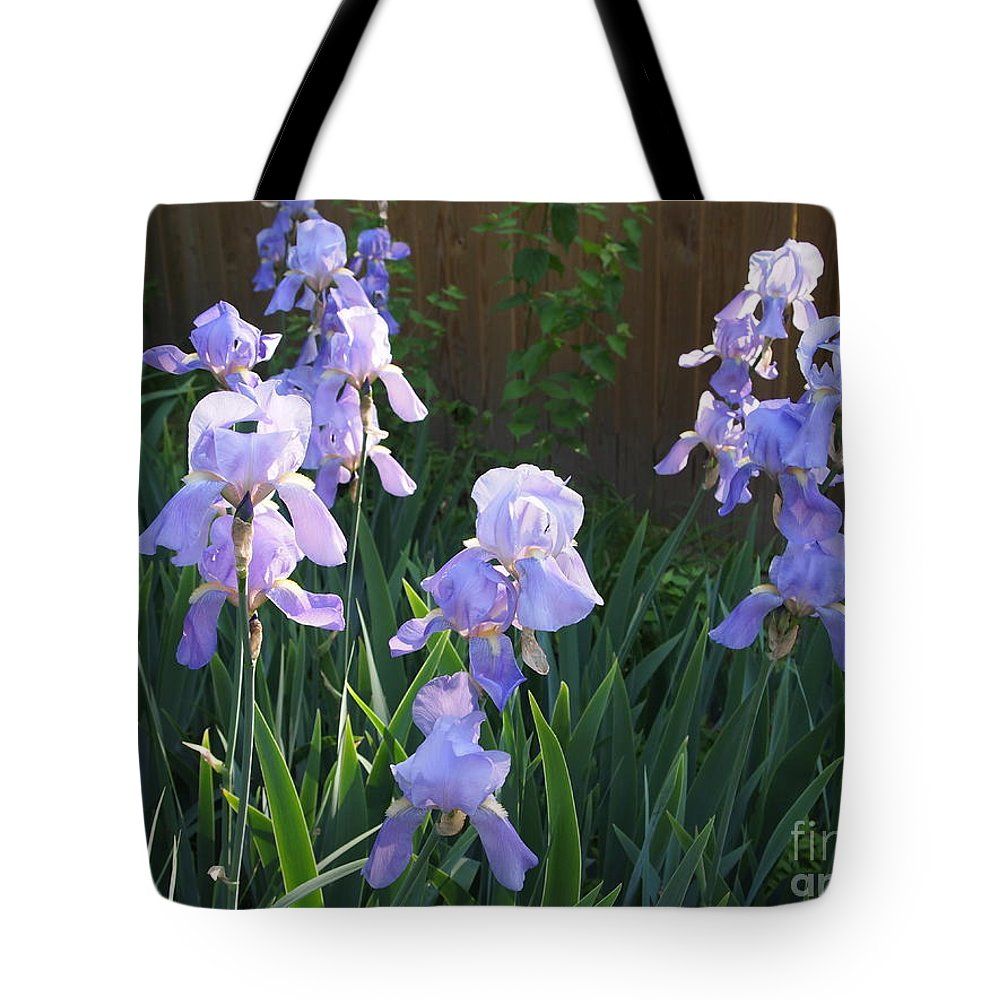 Iris In Palest Purple Along A Warm Brown Fence With Bright Green Spears Tote Bag featuring the photograph Iris Sunbath by Nancy Kane Chapman