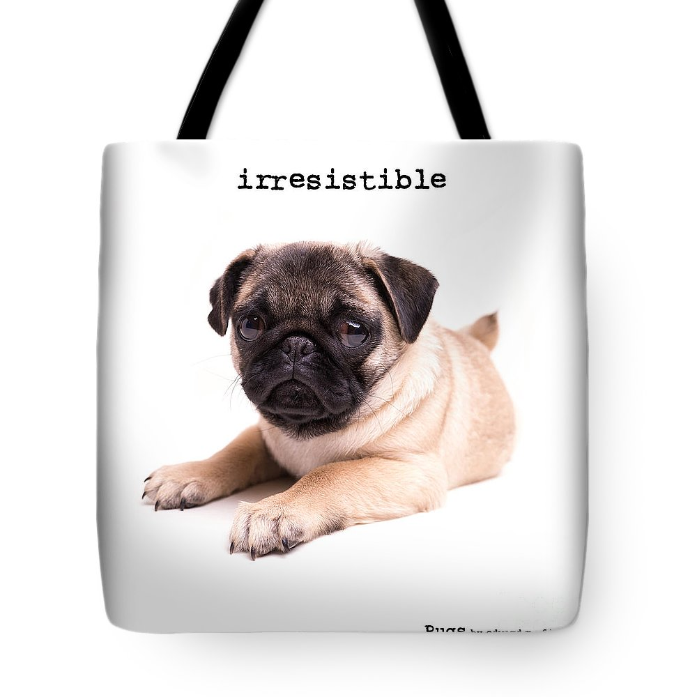 Animal Tote Bag featuring the photograph Irresistible Pug Puppy by Edward Fielding