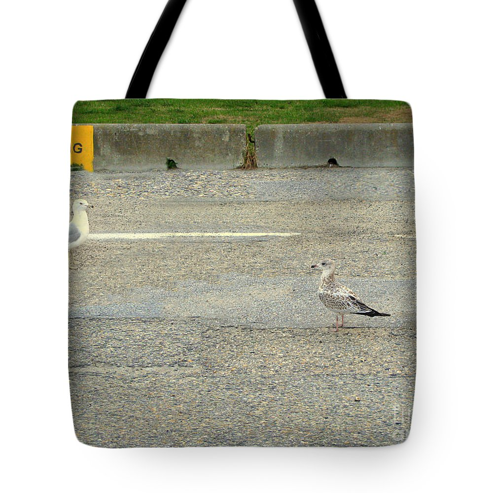 Seagulls Tote Bag featuring the photograph Is It An Hour Yet by Leone Lund