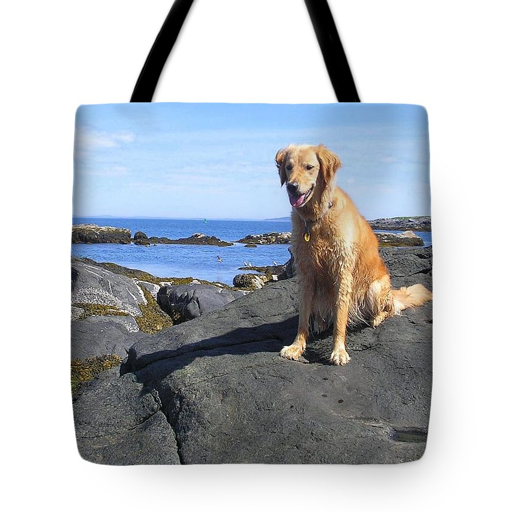 Golden Retriever Tote Bag featuring the photograph Island Dog by Elizabeth Dow