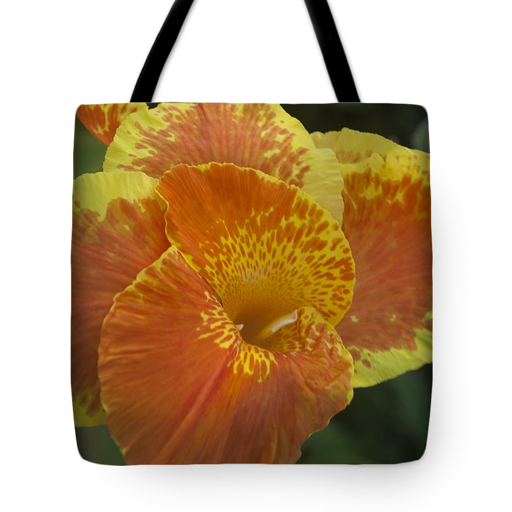 Floating Tote Bag featuring the photograph Island Paradise by Miguel Winterpacht