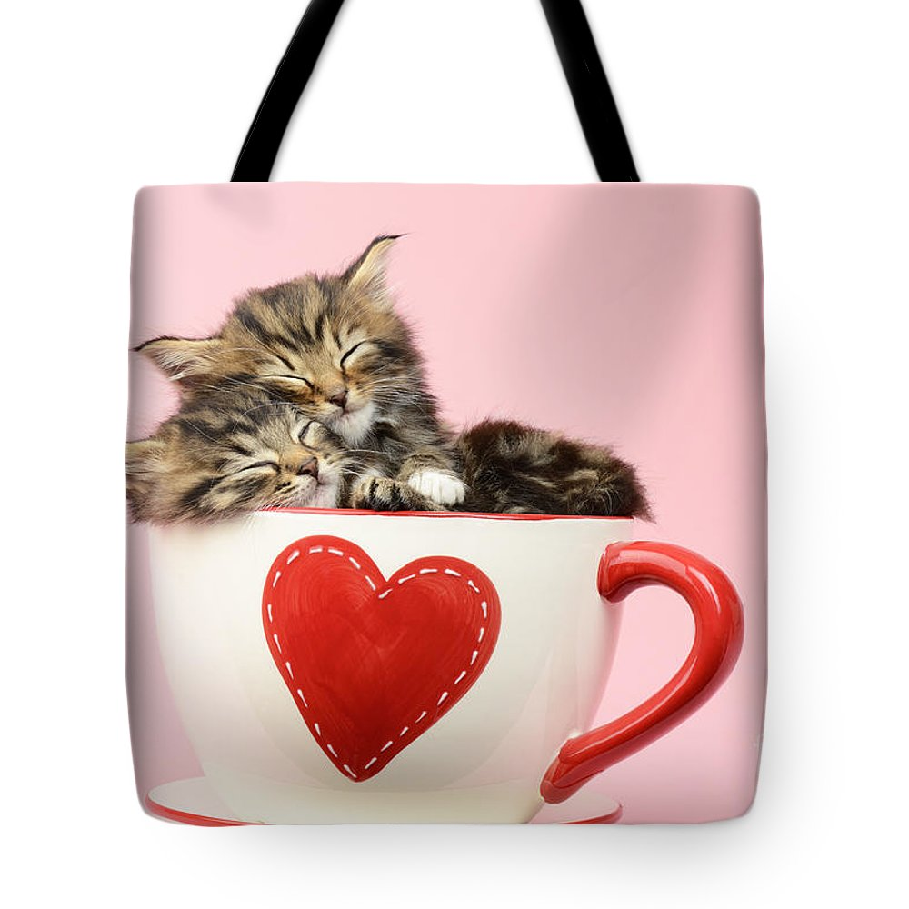 Tabby Tote Bag featuring the photograph It Must Be Love by MGL Meiklejohn Graphics Licensing