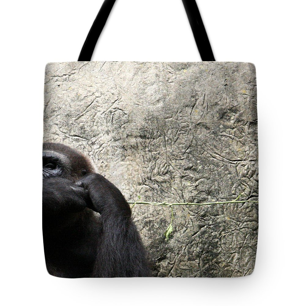 Busch Gardens Tote Bag featuring the photograph It Won't Fit by David Nicholls