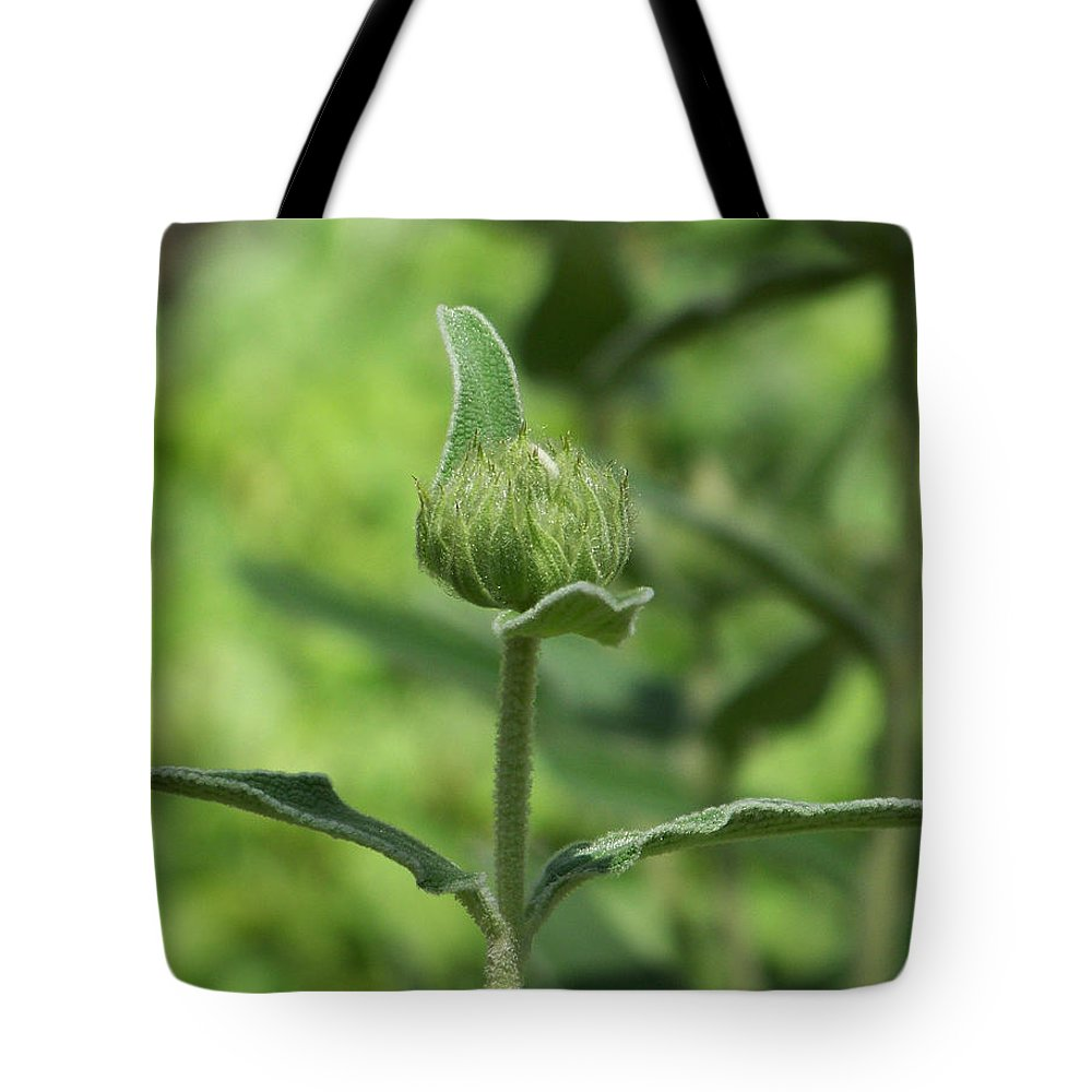 Plants Tote Bag featuring the photograph Its A Green World by Kathy McClure