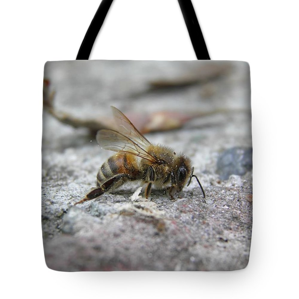 Bee Tote Bag featuring the photograph It's A Hard Life Little Bee by Leone M Jennarelli
