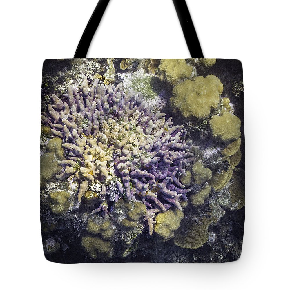 Ocean Tote Bag featuring the photograph It's Bouquet. by Lynne Browne