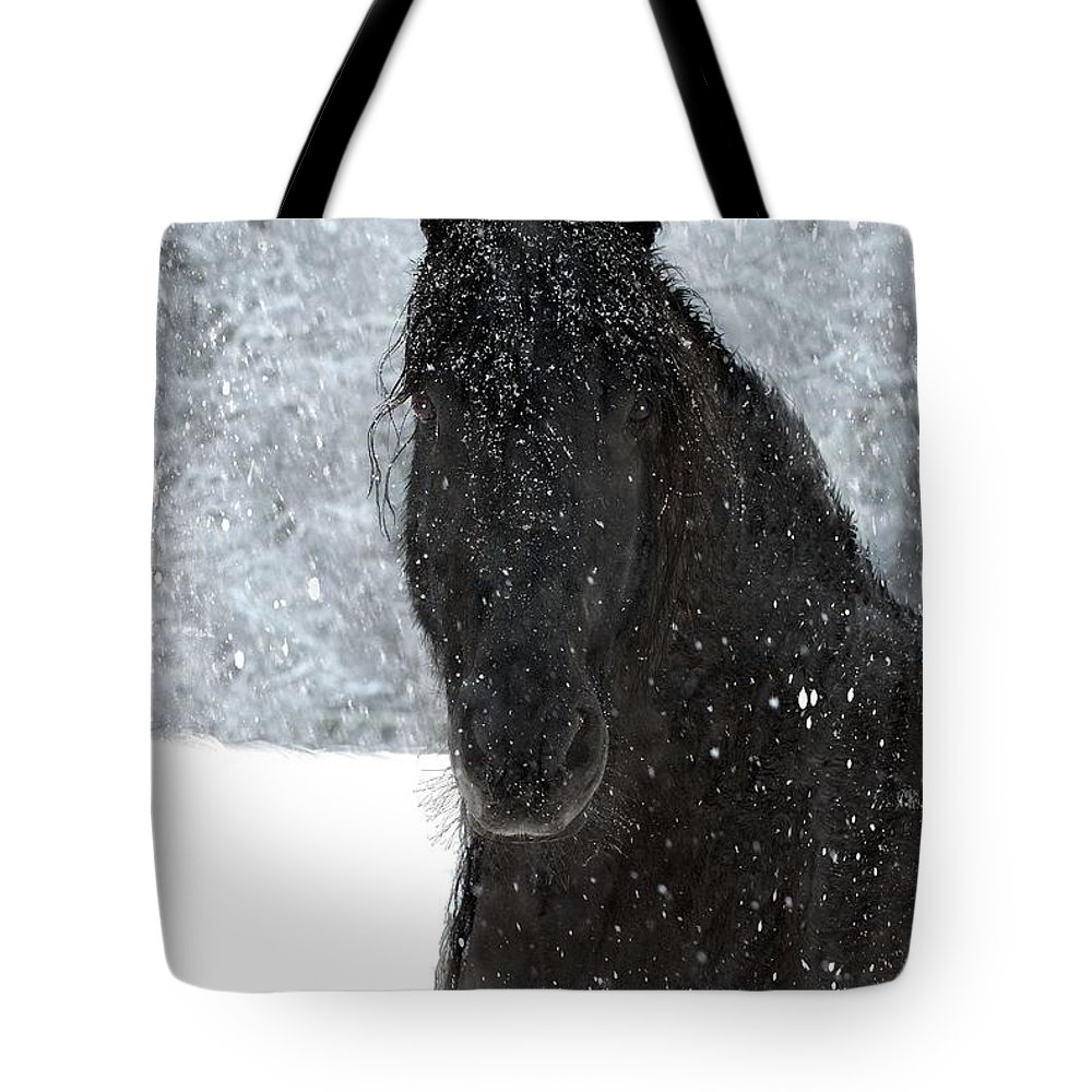 Friesian Horses Tote Bag featuring the photograph It's Friesian out here by Fran J Scott
