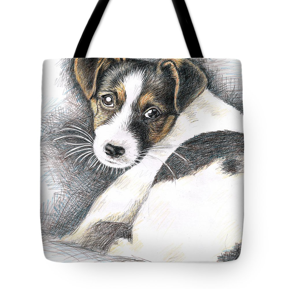 Dog Tote Bag featuring the drawing Jack Russell Puppy by Nicole Zeug