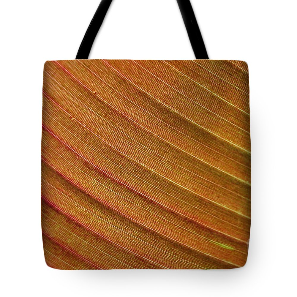 First Star Art Tote Bag featuring the photograph Jammer Blinds 002 by First Star Art