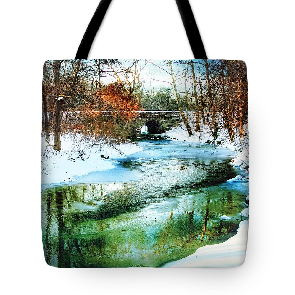 Winter Tote Bag featuring the photograph January Thaw by Jessica Jenney