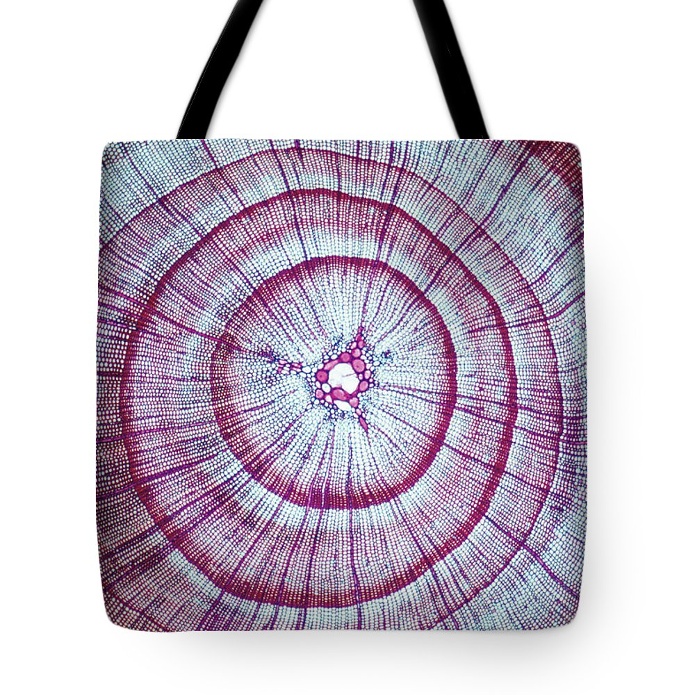 Np Tote Bag featuring the photograph Japanese Cedar Cryptomeria Japonica by Toshio Wakui