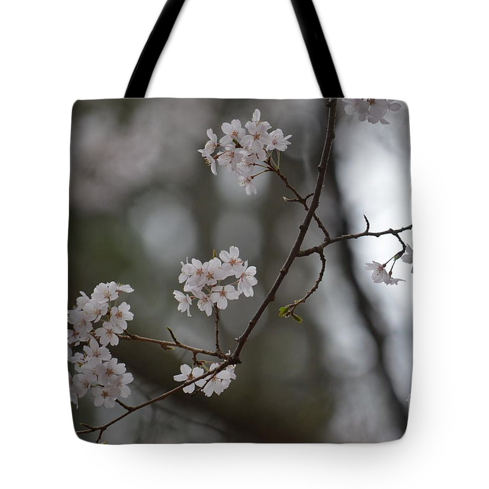 Japanese Cherry Blossoms Tote Bag featuring the photograph Japanese Cherry Blossoms by Maria Urso