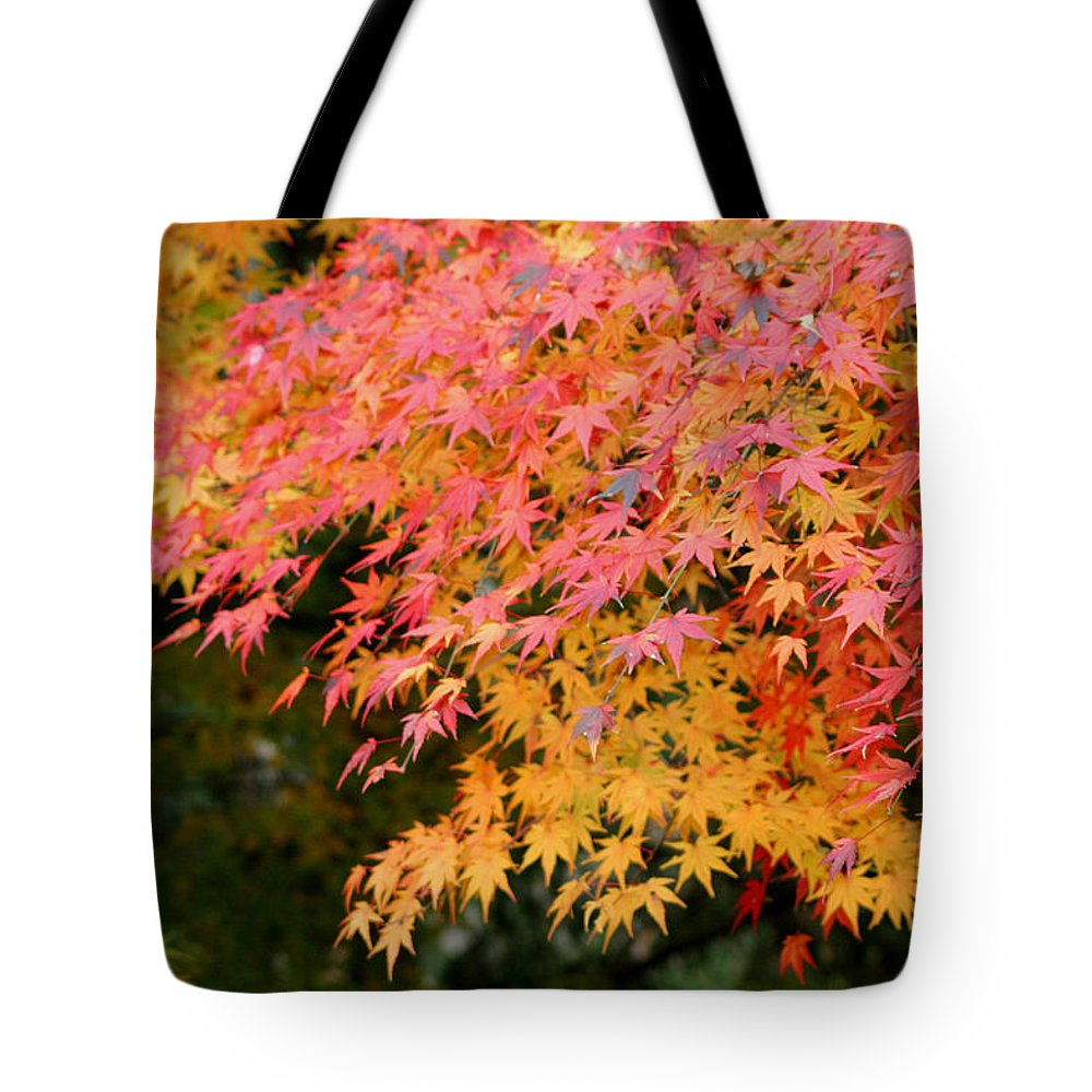 Japanese Maple Tote Bag featuring the photograph Japanese Maple by Living Color Photography Lorraine Lynch