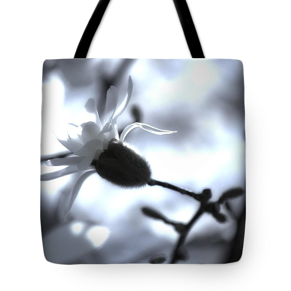 Jasmine Tote Bag featuring the photograph Jasmine Blossom by John Feiser