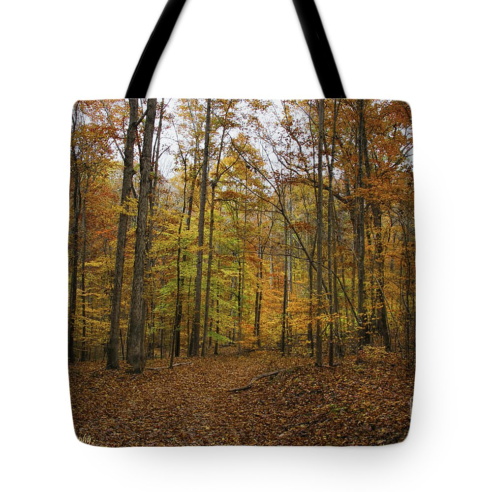 Fall Leaves Tote Bag featuring the photograph Jenkins Gap Trail by Barbara Bowen