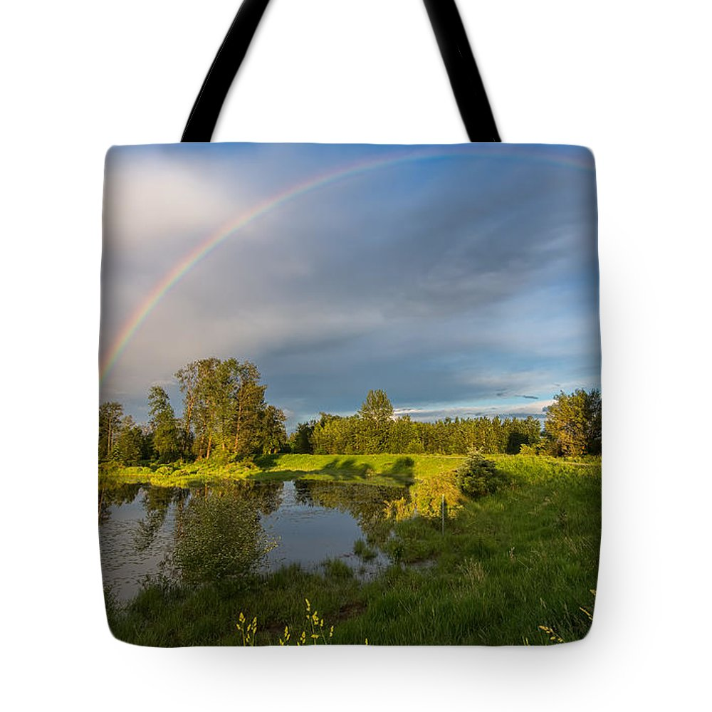 Beautiful Tote Bag featuring the photograph Jerry Sulina Park Rainbow by James Wheeler