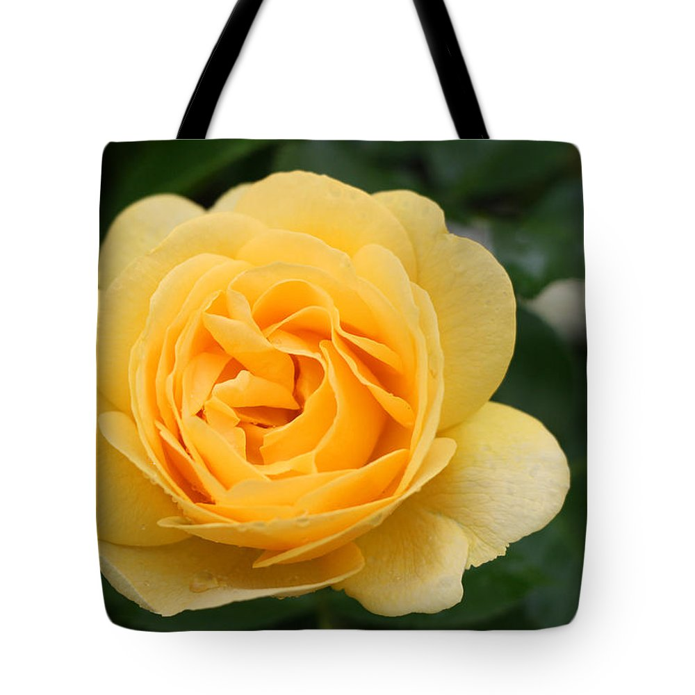 Julia Child Rose Tote Bag featuring the photograph Julia Child Floribunda Rose by Allen Beatty