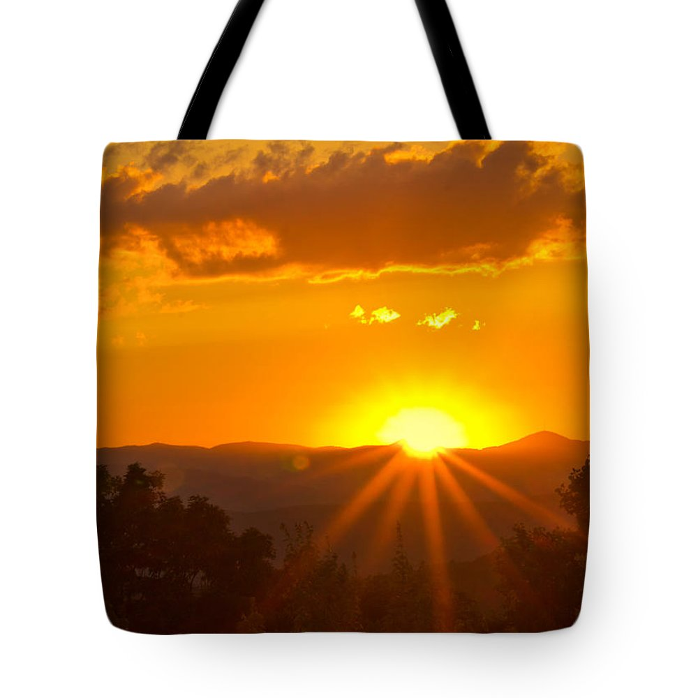 Tree Tote Bag featuring the photograph Jump Off Rock Sunset Flare by Jemmy Archer