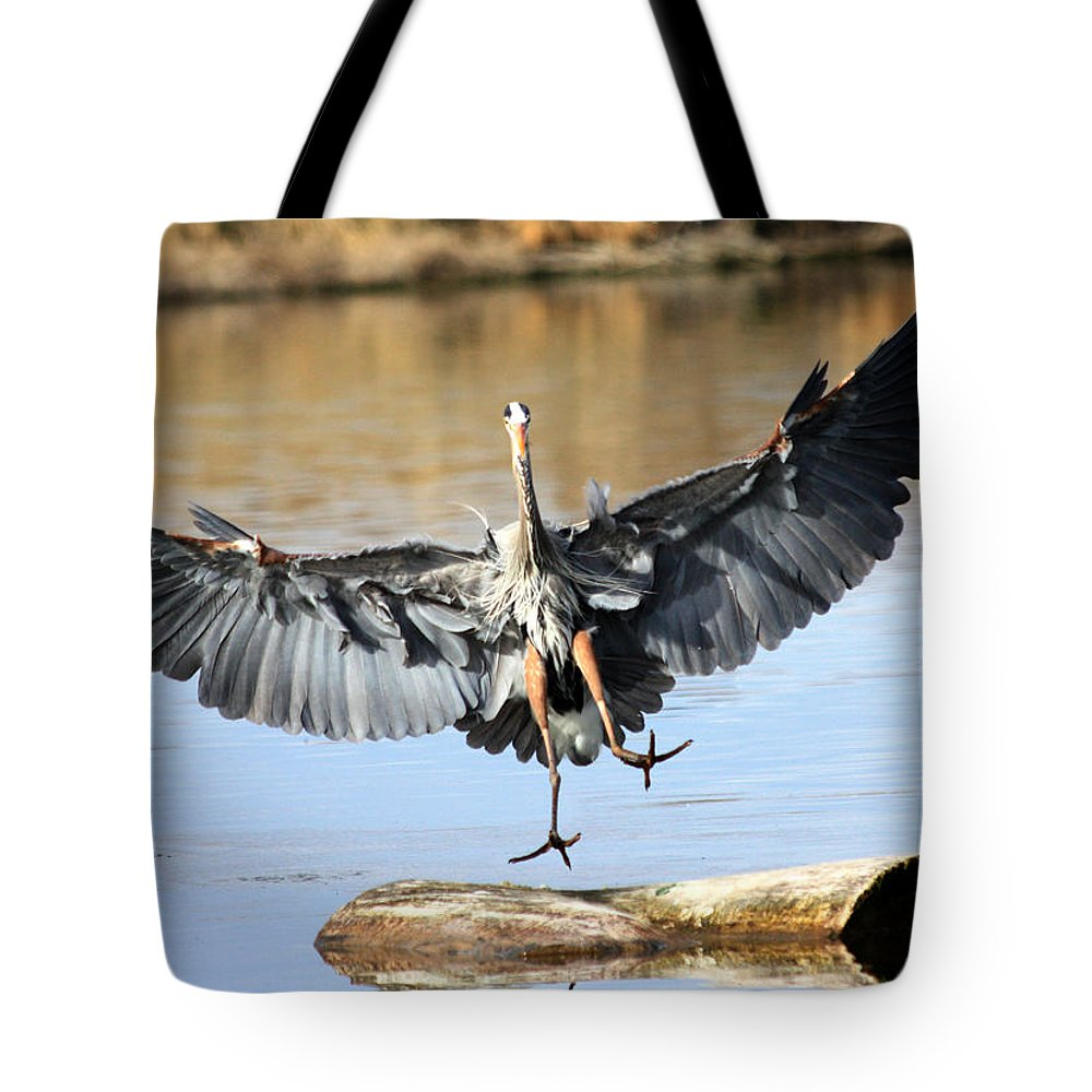 Great Blue Heron Tote Bag featuring the photograph Jumping For Joy by Shane Bechler