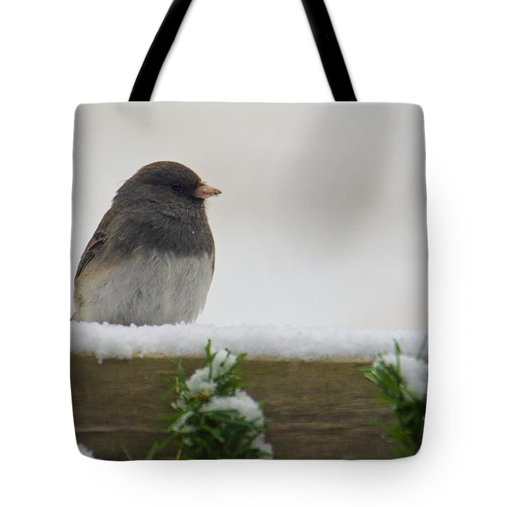 Junco Tote Bag featuring the photograph Junco On The Railing by Shelly Gunderson
