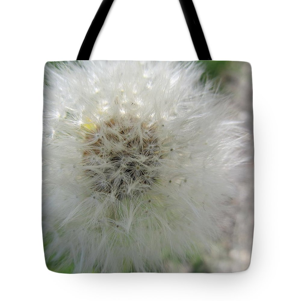 Dandelion Tote Bag featuring the photograph Just A Dandelion by Tina M Wenger