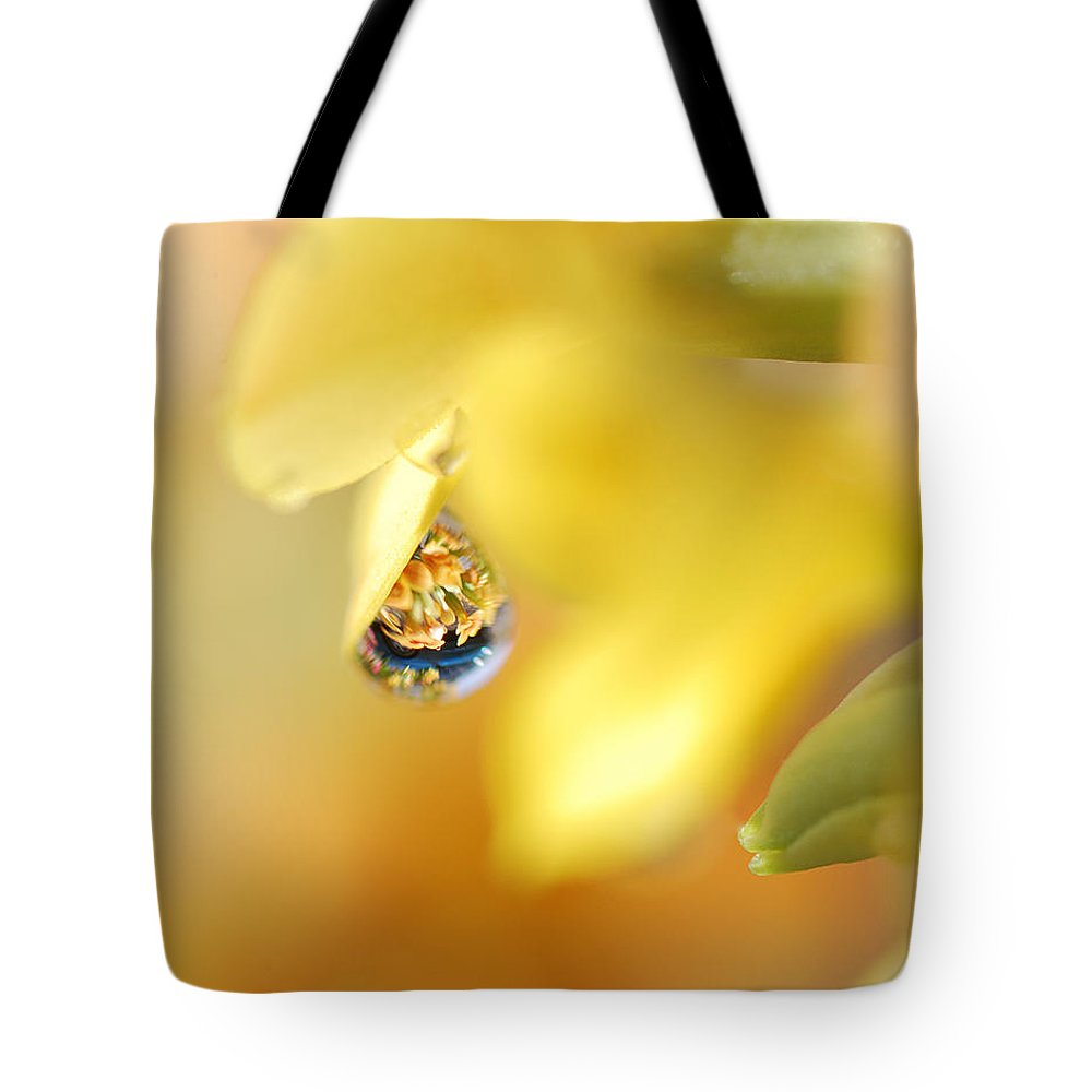 Water Drops Tote Bag featuring the photograph Just A Drop Of Spring by Sue Capuano