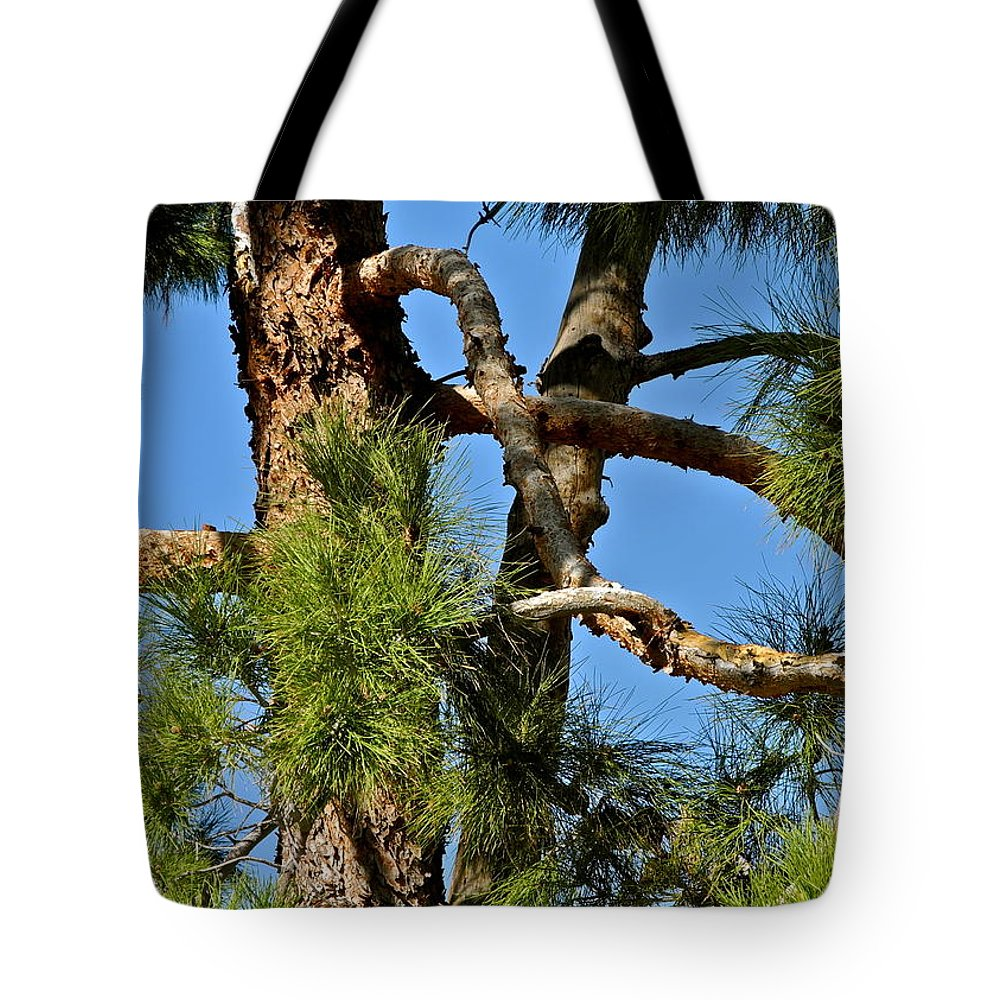 Tangle Tote Bag featuring the photograph Just A Tangle Of Pine Tree Branches by Kirsten Giving