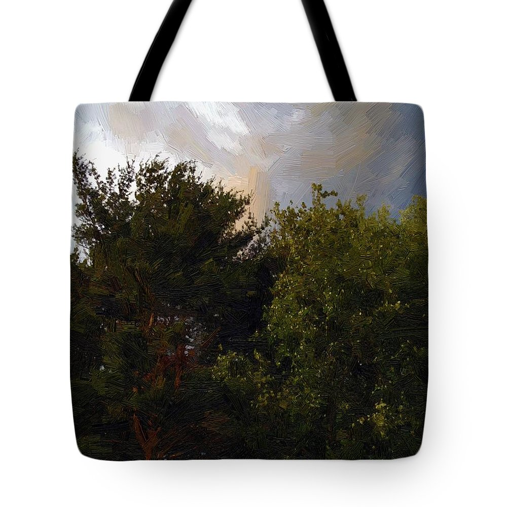 Clouds Tote Bag featuring the painting Just Before The Rain by RC DeWinter