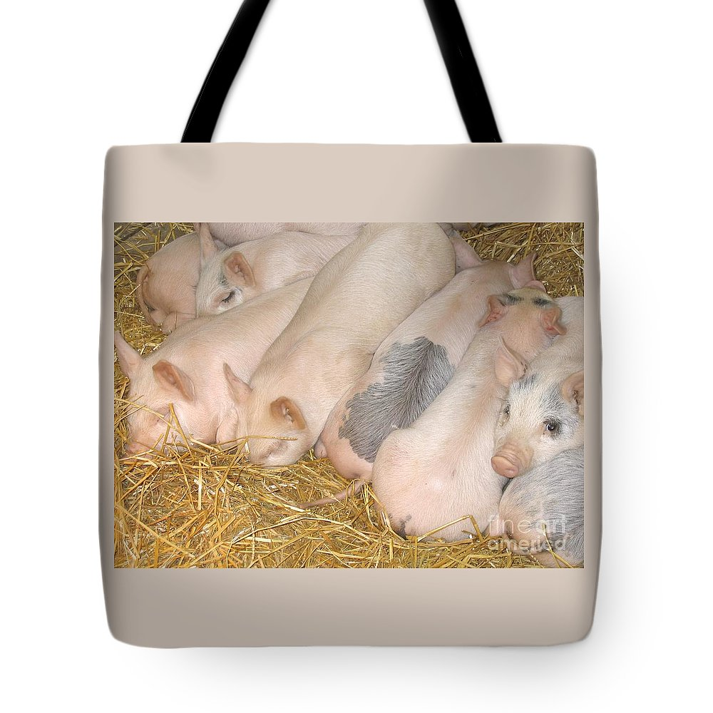 Piglets Tote Bag featuring the photograph Just Cannot Sleep by Ann Horn