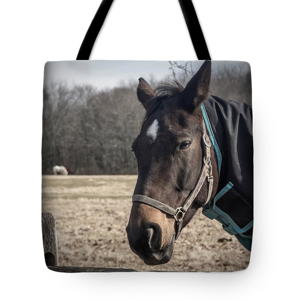 Just Chillin Tote Bag featuring the photograph Just Chillin by Photographic Arts And Design Studio