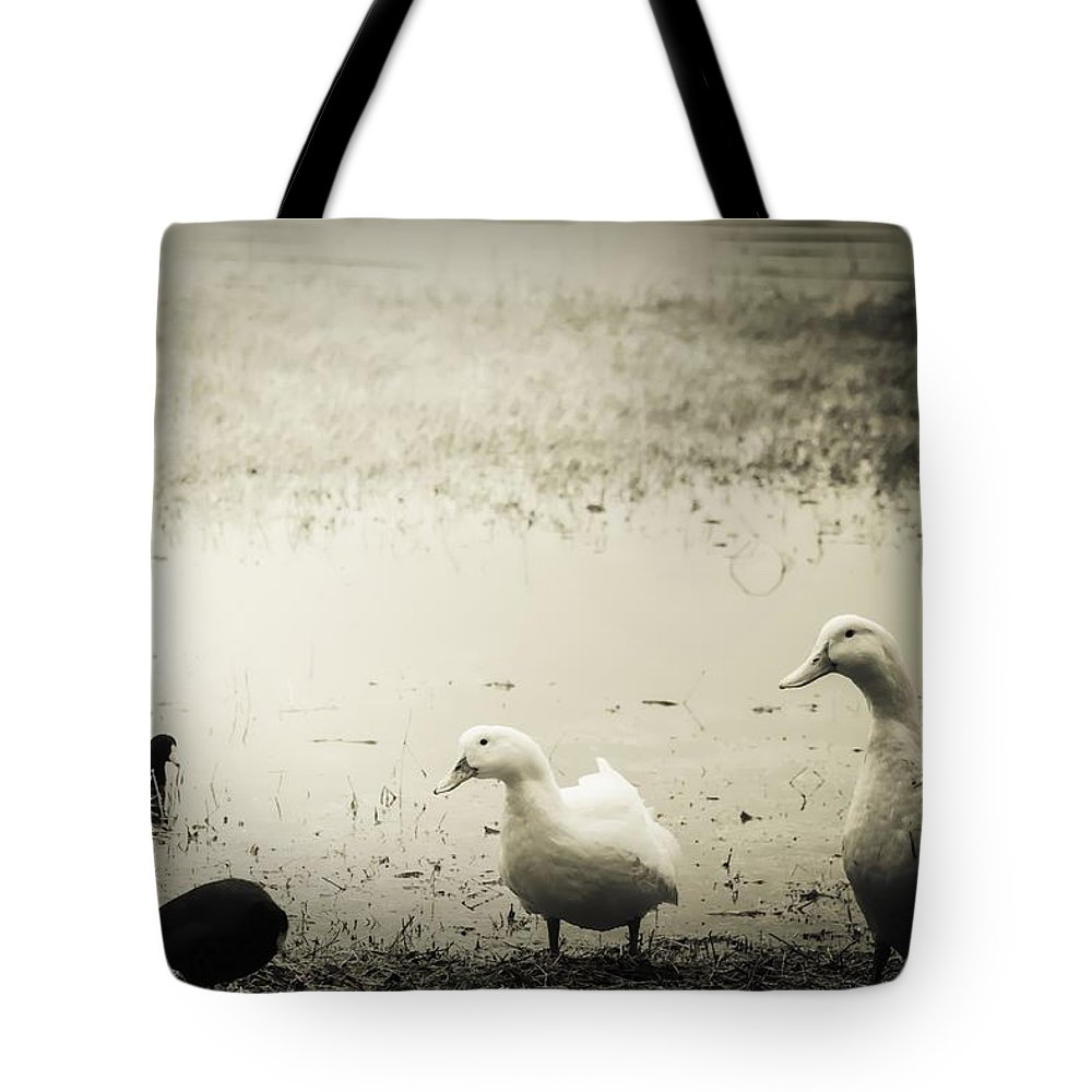 Duck Tote Bag featuring the photograph Just Duckie by Debra Forand