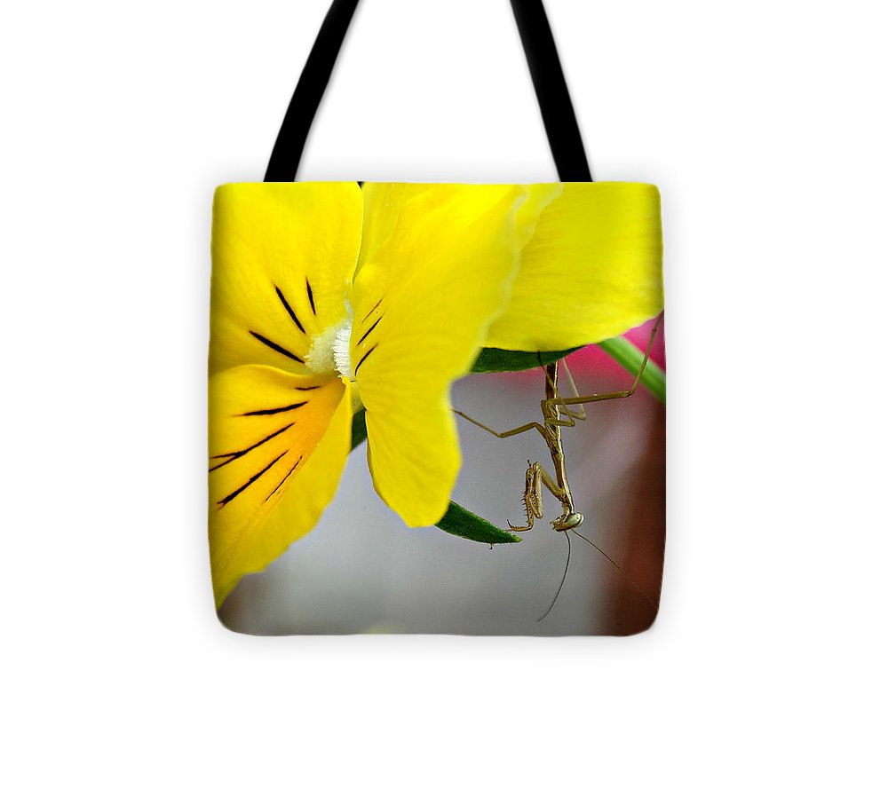 Just Hangin' Around Tote Bag featuring the photograph Just Hangin' Around by Brenda Conrad