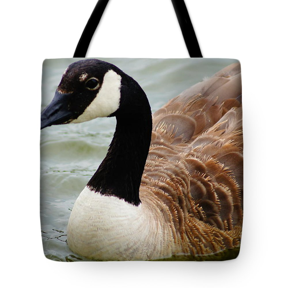 Birds Tote Bag featuring the photograph Just Passing Through by Jeffery L Bowers