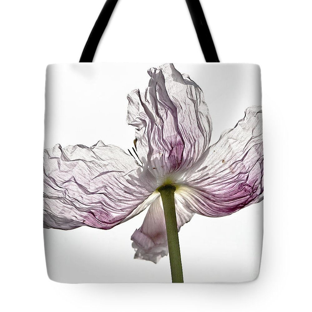Poppy Tote Bag featuring the photograph Just Unfolding by Wanda Krack