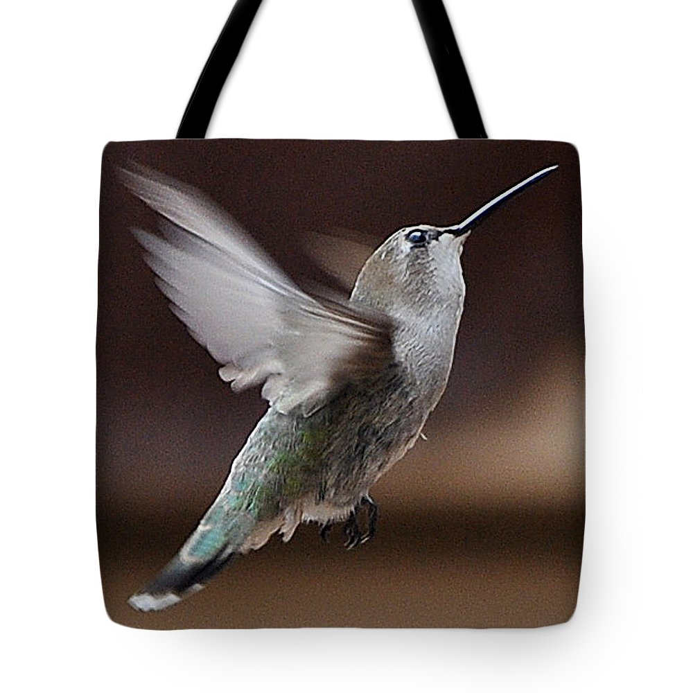 Hummingbird Tote Bag featuring the photograph Juvenile Female Anna's Hummingbird In Flight by Jay Milo