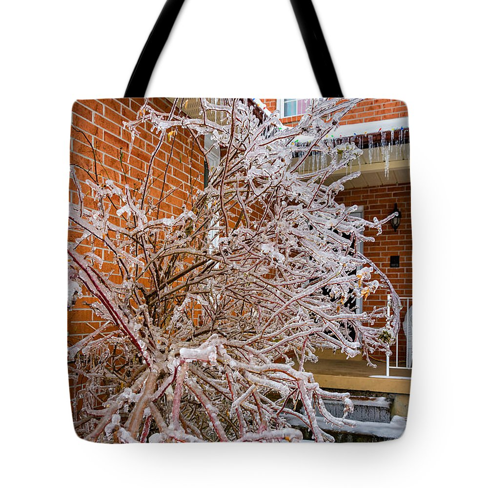 Steve Harrington Tote Bag featuring the photograph Karma In Winter by Steve Harrington